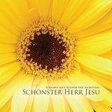 Schönster Herr Jesu (impact e.V.)